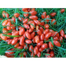 Pachet 30 plante Goji  60 cm + 10 Aronia
